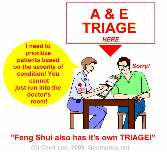 656px-Triage.png